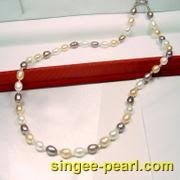 米珠图片四-- 彩色珍珠项链XL011-10